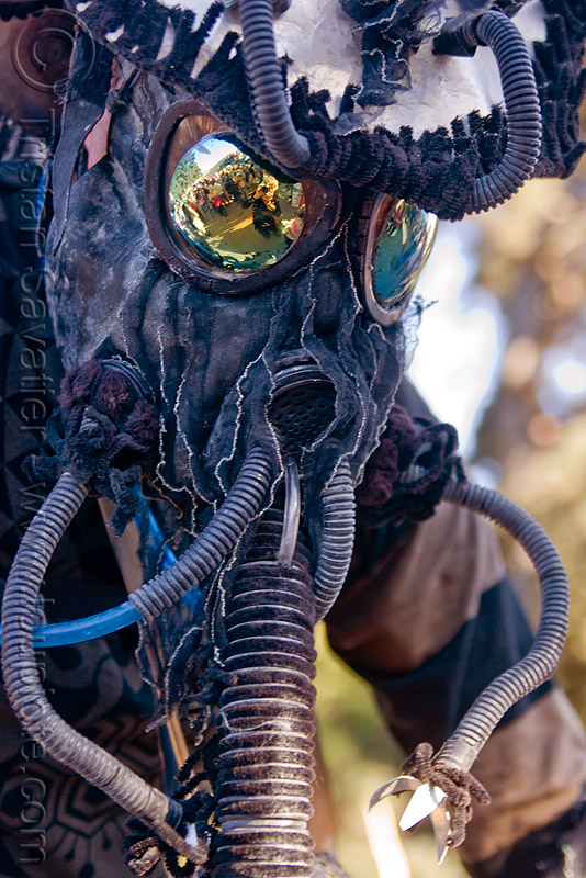 alien insect costume, black, burning man decompression, costume, insect, kevin