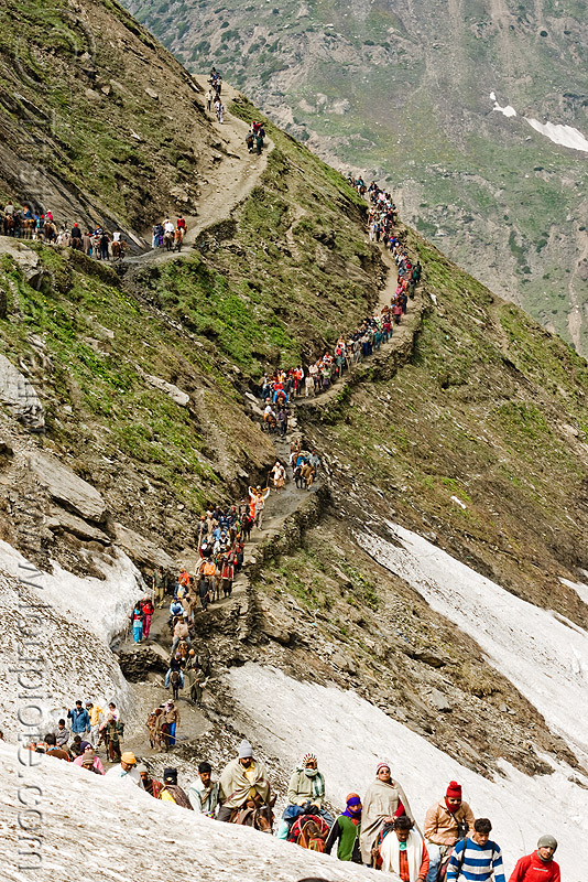 pilgrims and ponies on trail - amarnath yatra (pilgrimage) - kashmir, amarnath yatra, kashmir, mountain trail, mountains, pilgrimage, pilgrims, snow, trekking, yatris, अमरनाथ गुफा