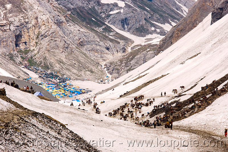 amarnath yatra (pilgrimage) - kashmir, amarnath yatra, encampment, glacier, hiking, hindu pilgrimage, horses, india, kashmir, kashmiris, mountain trail, mountains, pilgrims, ponies, pony station, snow, tents, trekking, valley