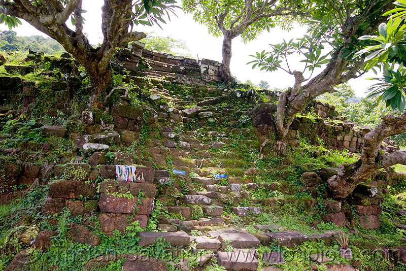 ancient stone stair - wat phu champasak (laos), hindu temple, hinduism, khmer temple, ruins, stairs, stone stairs, trees