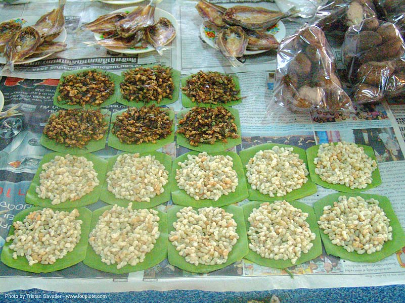 ant eggs and insects at street market, edible bugs, edible insects, entomophagy, food, giant ant eggs, larva, larvae, street seller, thailand, worms