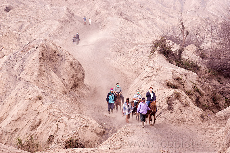 ascension of bromo volcano, bromo volcano, dust masks, gunung bromo, hiking, horses, java, mountains, ponnies, sand, trail, trekking, volcanic ash, walking