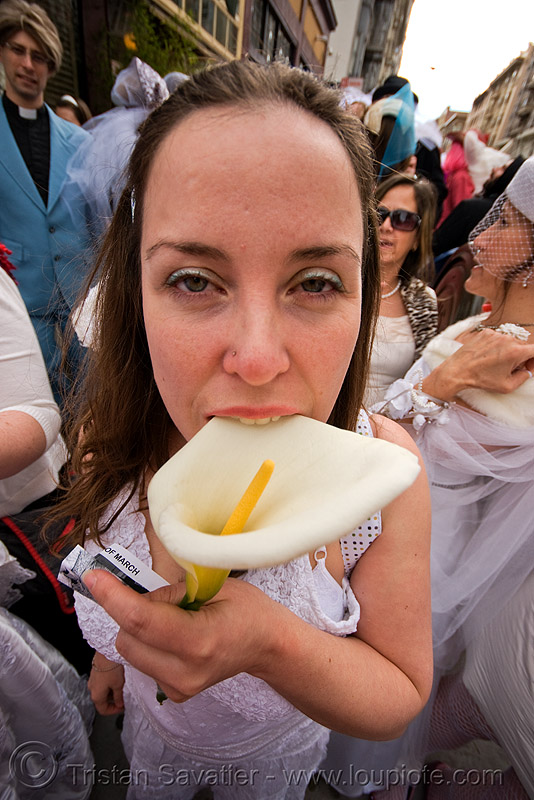 calla lily flower and asha - brides of march (san francisco), aethiopica, alismatales, araceae, arum lily, cala lily, festival, liliopsida, people, wedding, zantedeschia, zantedeschia aethiopica
