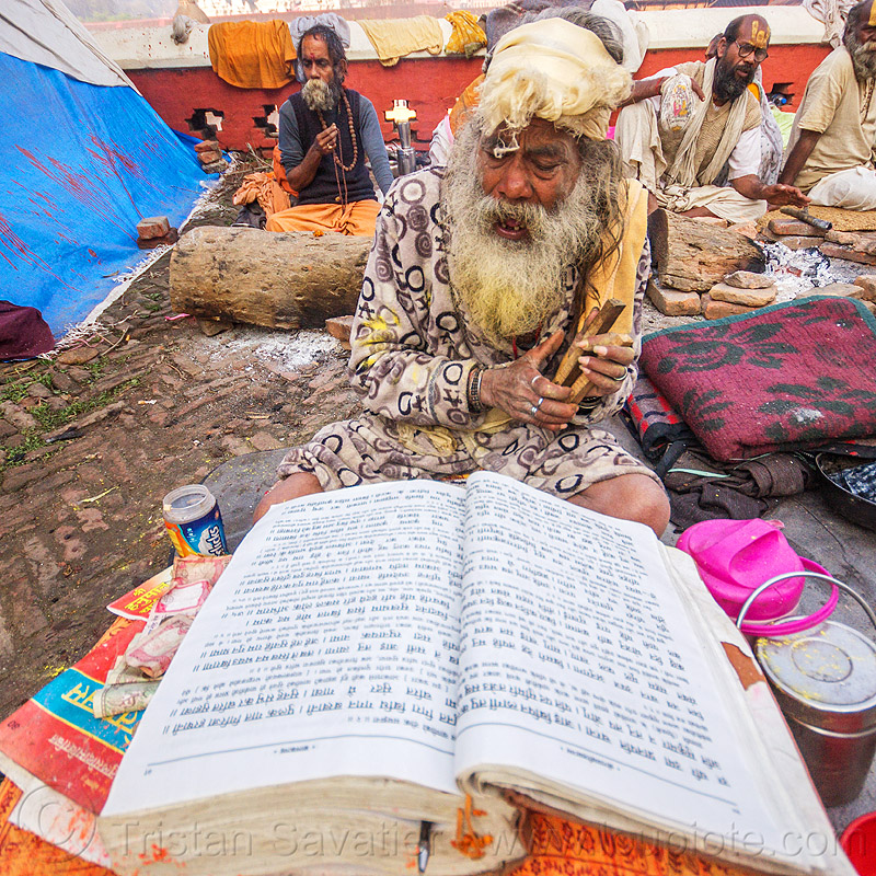 baba (hindu devotee) reading mantras from big book (nepal), beard, festival, hinduism, kathmandu, maha shivaratri, man, pashupati, pashupatinath, people, praying, sadhu, white beard