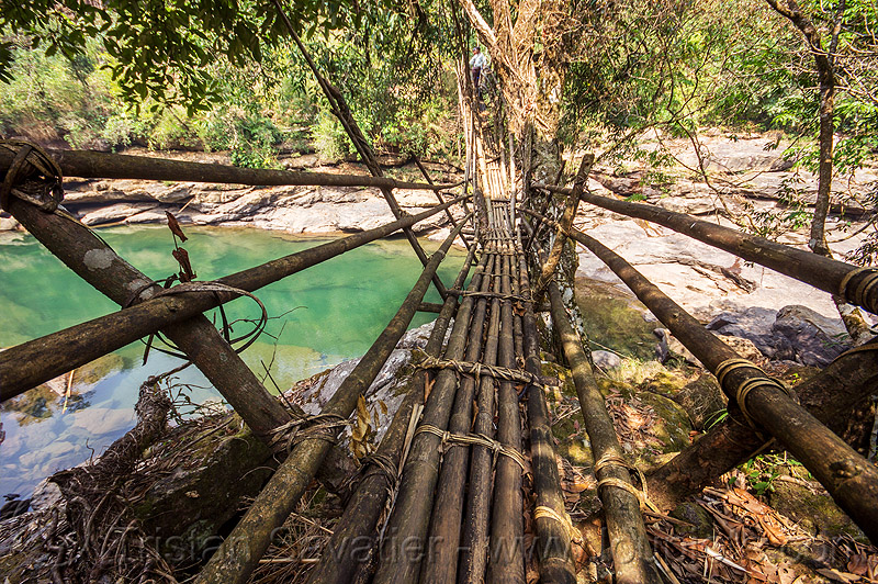 bamboo bridge - east khasi hills (india), footbridge, jungle, mawlynnong, meghalaya, rain forest, river, water