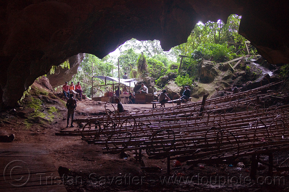 bamboo ladders of the bird's nests collectors - madai cave (borneo), bird's nest, cave mouth, caving, gua madai, ida'an, idahan, madai caves, natural cave, people, spelunking