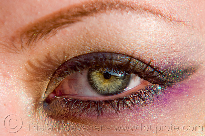 beautiful green eye, close up, eye color, eyelashes, green eye, iris, left eye, lux, macro, makeup, mascara, pupil, woman