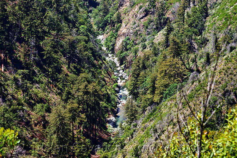 big sur river valley - vantana wilderness, big sur river, canyon, forest, gorge, hiking, pine ridge trail, stream, trees, trekking, v-shaped valley, vantana wilderness