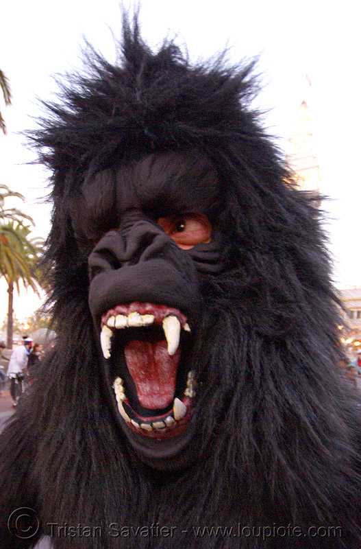 bigfoot at halloween critical mass (san francisco), animal costume, big foot, fur, furry, gorilla, hairy, halloween critical mass, man, monkey, sasquatch, teeth, yeti
