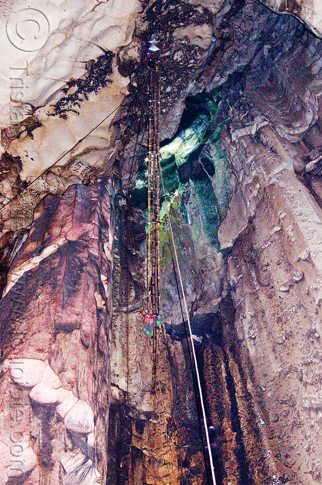 bird's nests collectors on bamboo ladder in madai cave (borneo), bats, bird's nest, caving, flash, gua madai, ida'an, idahan, madai caves, natural cave, people, rattan ladder, ropes, spelunking