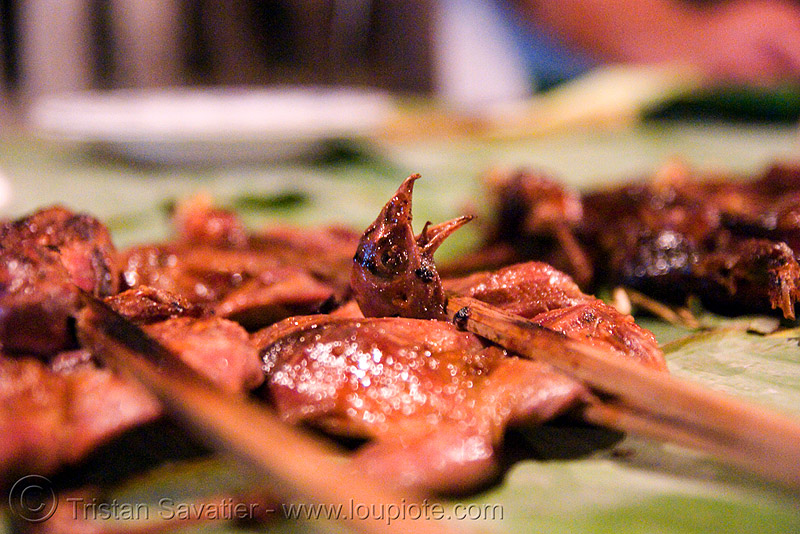 birds on a stick - luang prabang (laos), beak, bird head, birds, brochette, cooked, food, laos, luang prabang, quails, roasted, stick