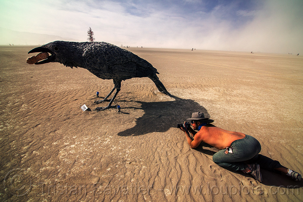 birdwatcher - giant crow - burning man 2016, art installation, birdwatcher, burning man, camera, giant bird, giant crow, giant raven, hat, peanut, photographer, sculpture