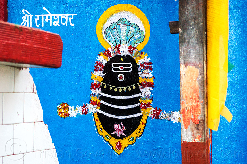black lingam - five headed naga snake - hindu symbolism (india), cobra, five-headed, flowers, hindu temple, hinduism, india, naga snake, nāga snake, painting, shiva lingam, symbol, symbolism