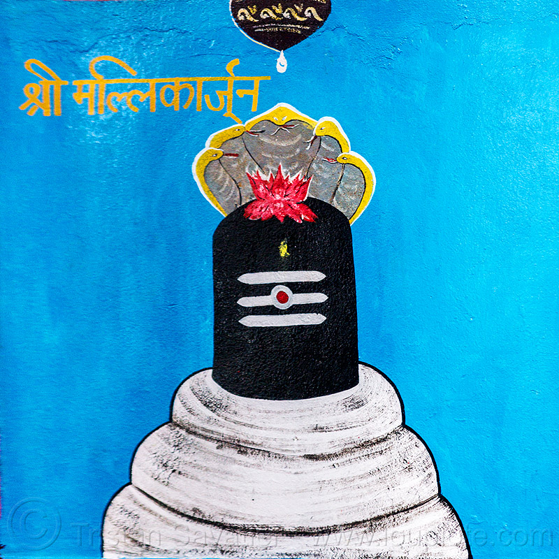 black lingam - lotus flower and five-headed naga snake - hindu symbolism (india), cobra, five-headed, hindu temple, hinduism, linga, lotus flower, naga snake, nāga snake, painting, shiva lingam, symbol, symbolism, water droplet