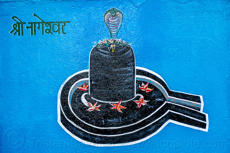 black lingam - naga snake - hindu symbolism (india), cobra, five, five-headed, flowers, hindu temple, hinduism, linga, nāga, nāga snake, painting, shiva lingam