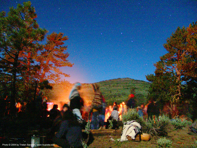 bonfire-under-stars - rainbow gathering - hippie, bonfire, hippie, night, rainbow family, rainbow gathering, stars, trees