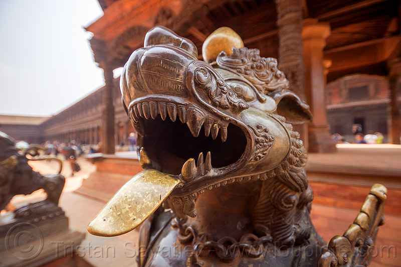 brass lion sticking tongue out - bhaktapur durbar square (nepal), bhaktapur, brass, durbar square, head, hinduism, sculpture, statue, sticking out tongue, sticking tongue out, teeth