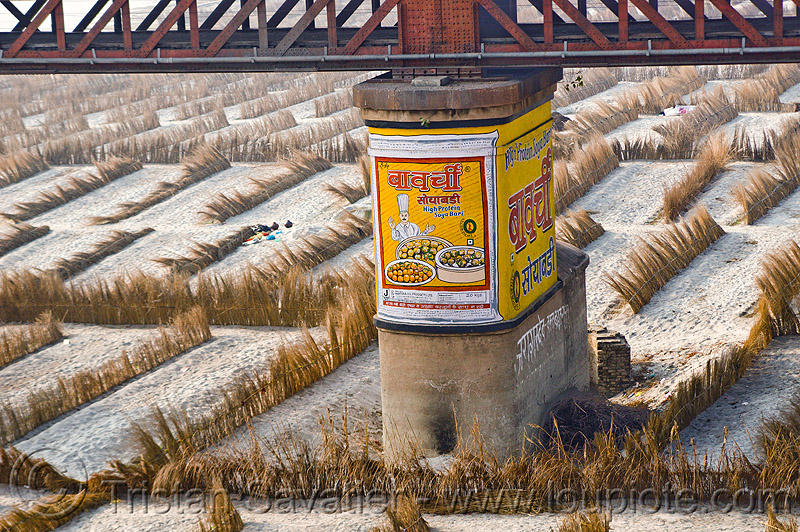 bridge pillar in ganges floodplain, advertising, agriculture, bridge pillar, floodplain, ganga, ganges river, high protein, india, mantora oil products, metal bridge, painted ad, riverbed, sand, soya bari, truss bridge