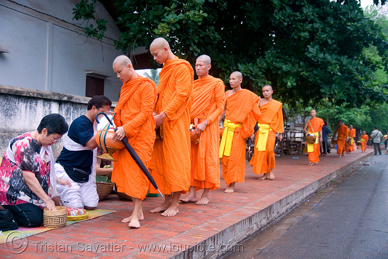 buddhist monks receiving alms at dawn - luang prabang (laos), alms bowl, bhagwa, buddhism, buddhist monks, dawn, luang prabang, orange, rice, saffron color, street