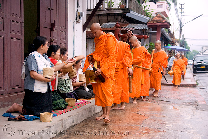 buddhist monks receiving alms at dawn - luang prabang (laos), alms bowl, bhagwa, buddhism, orange, rice, saffron color, street
