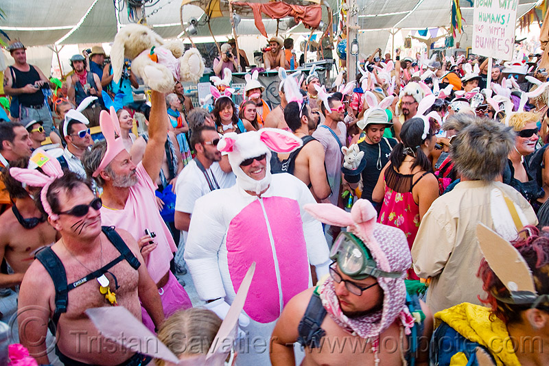 bunny march mayhem in center camp cafe - burning man 2009, bunnies, bunny ears, bunny march, burning man
