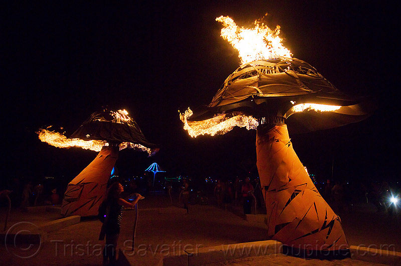 burning mushrooms - xylophage - burning man 2013, art, art installation, fire, flames, flaming lotus girls, mushroom, night, sculpture
