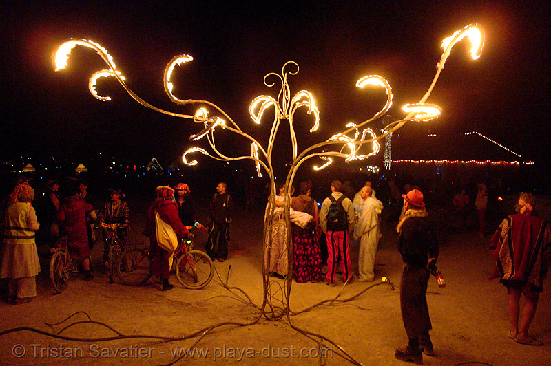 burning tree sculpture - burning-man 2006, art installation, burning man, burning tree, fire, flames, kasia wojnarski, night