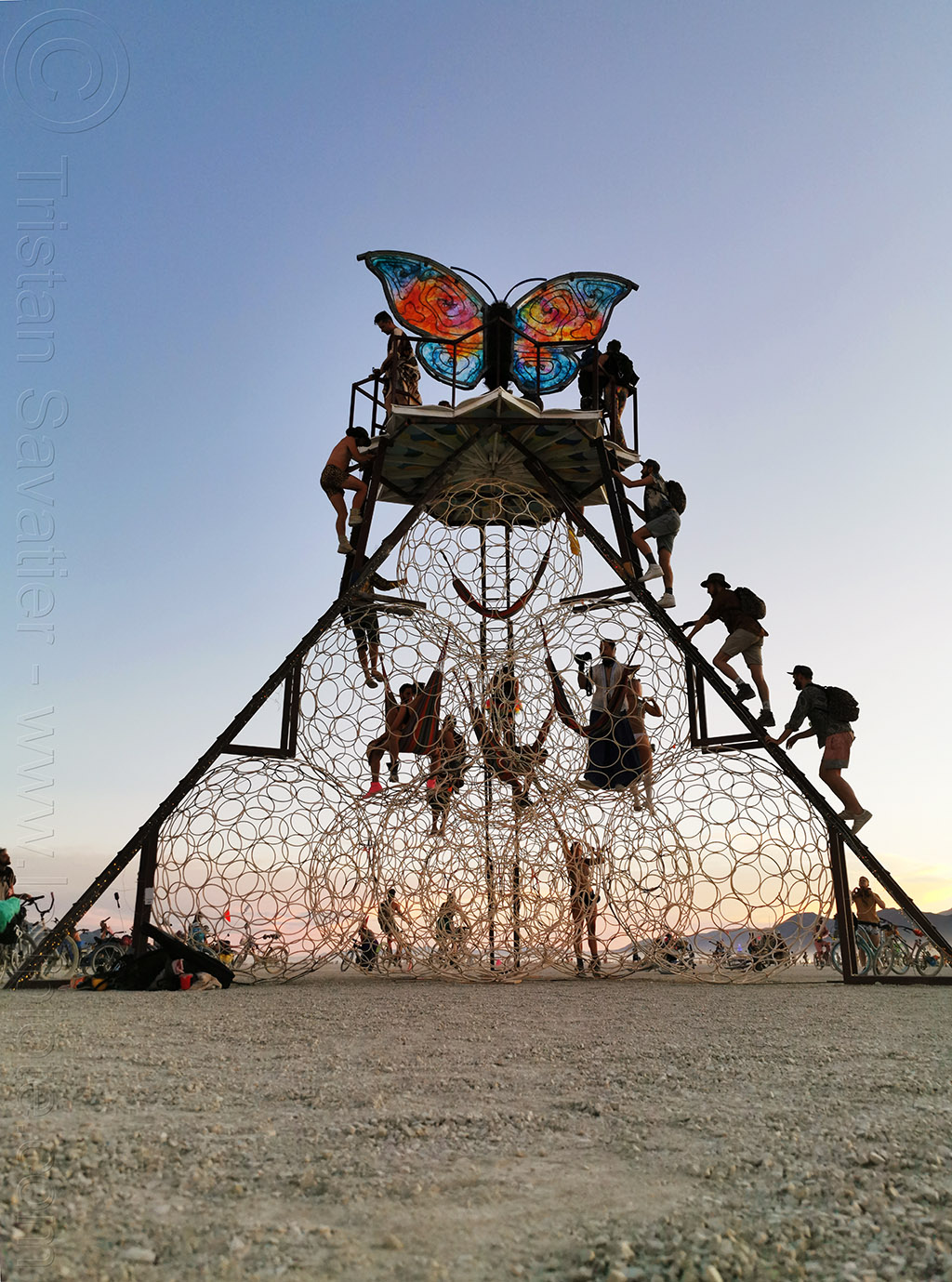 the butterfly - burning man 2019, art installation, burning man, swig miller, the phoenix and the butterfly