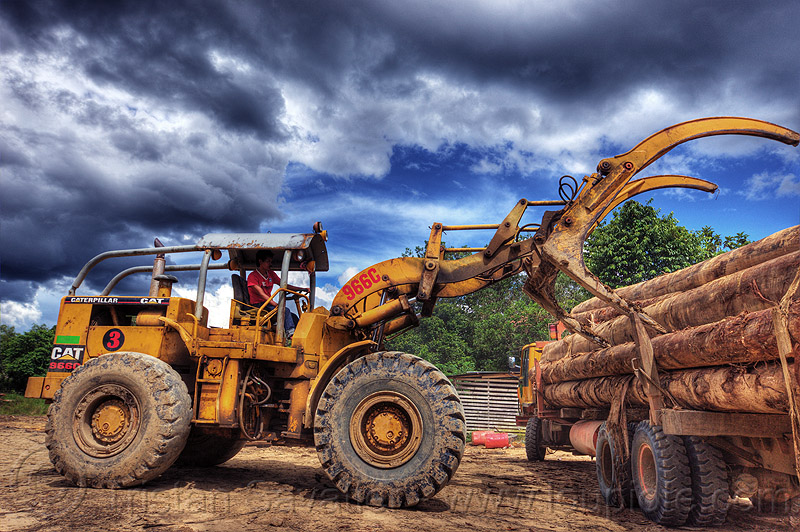 caterpillar 966C unloading logging truck, at work, borneo, cat 966c, caterpillar 966c, clouds, cloudy sky, deforestation, environment, front loader, logging camp, logging forks, logging truck, lorry, malaysia, tree logging, tree logs, tree trunks, wheel loader, working, yellow