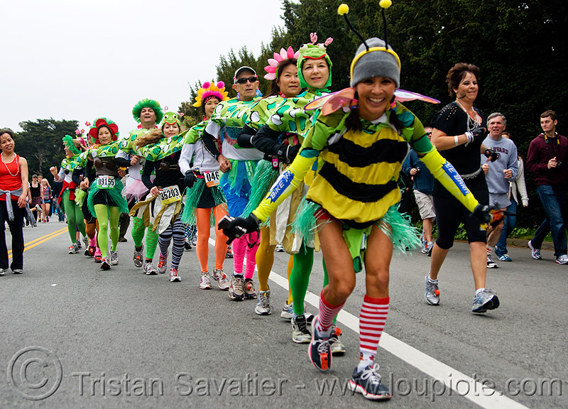 centipede runners - asian, bay to breakers, centipedes, festival, footrace, people, street party