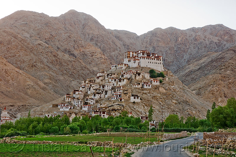 chemrey gompa - road to pangong lake - ladakh (india), chemrey gompa, hill, ladakh, mountains, tibetan monastery