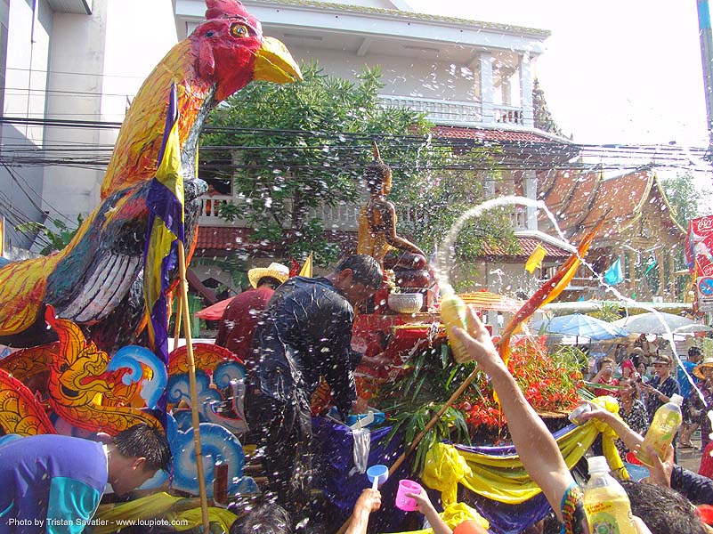 เชียงใหม่ - chiang mai - สงกรานต์ - songkran festival (thai new year) - thailand, carnival float, chiang mai, chicken, cockbird, rooster, soaked, songkran, street, thai new year, water festival, wet, ประเทศไทย, สงกรานต์, เชียงใหม่