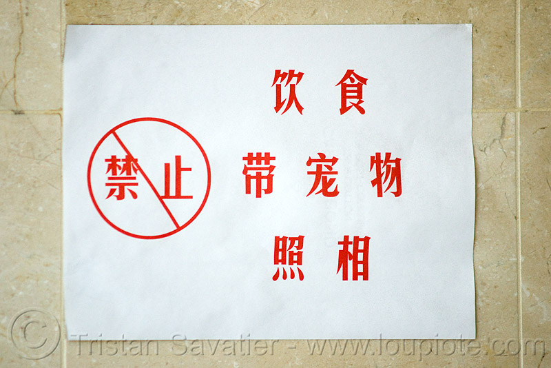 "chinese sign says ""no photos"", forbidden, no photography, posted"
