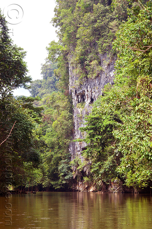 cliff - melinau river - mulu (borneo), cliff, gunung mulu national park, jungle, melinau river, rain forest, sungai melinau, water