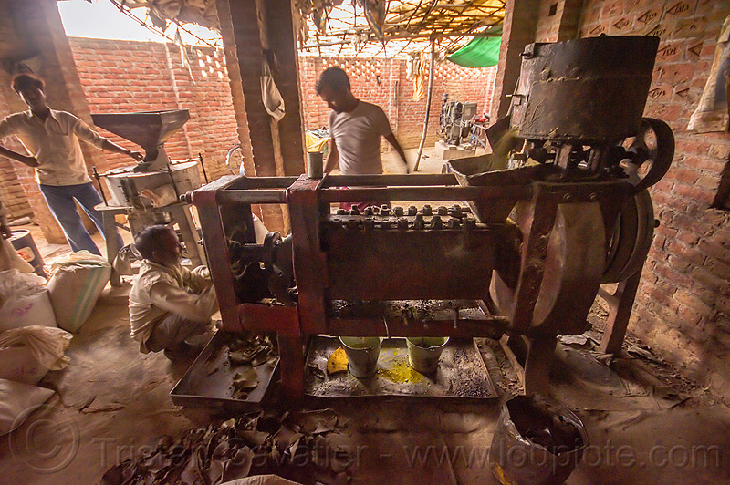 communal oil press machine in indian village, india, khoaja phool, machine, oil press, village, खोअ�\x9cा फूल