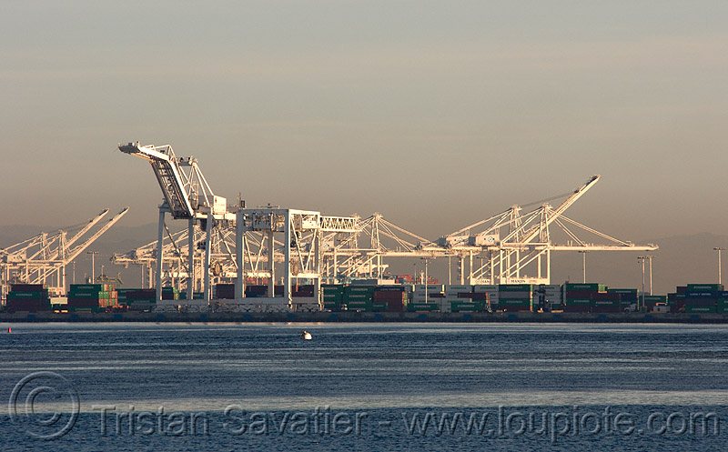 container cranes, container cranes, container terminal, containers, harbor cranes, harbour crane, port of oakland, portainers, san francisco bay, sf bay