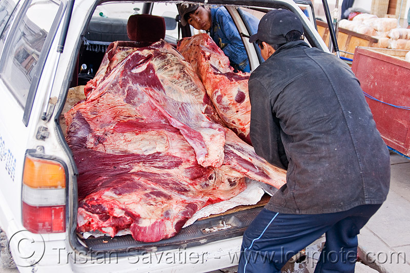 cow carcass in a car, beef, bolivia, butchers, car, carcass, delivery, man, meat market, meat shop, raw meat