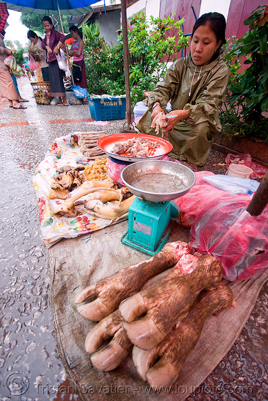 cow feet on the market, beef, cow feet, luang prabang, marlet, meat market, meat shop, raw meat, water buffalo