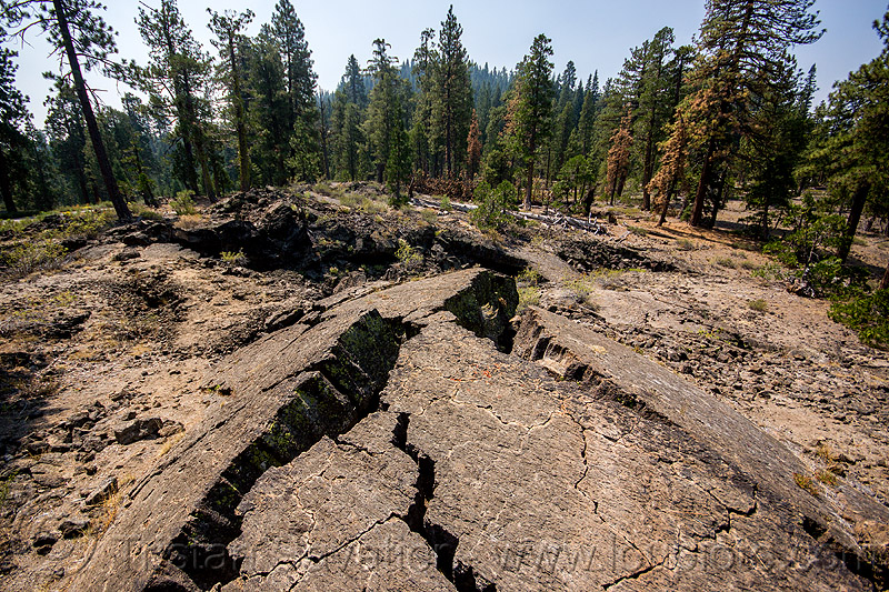 cracked lava flow, basalt, forest, lava beds, rock, rock formation, shasta-trinity national forest, stone, volcanic