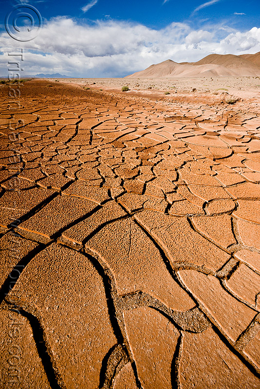 cracked mud - desert, altiplano, drought, dry, dry mud, dry spell, noroeste argentino, pampa