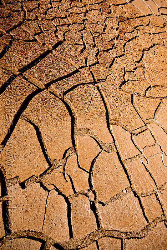 cracked mud - drought, altiplano, cracked mud, desert, drought, dry mud, dry spell, noroeste argentino, pampa