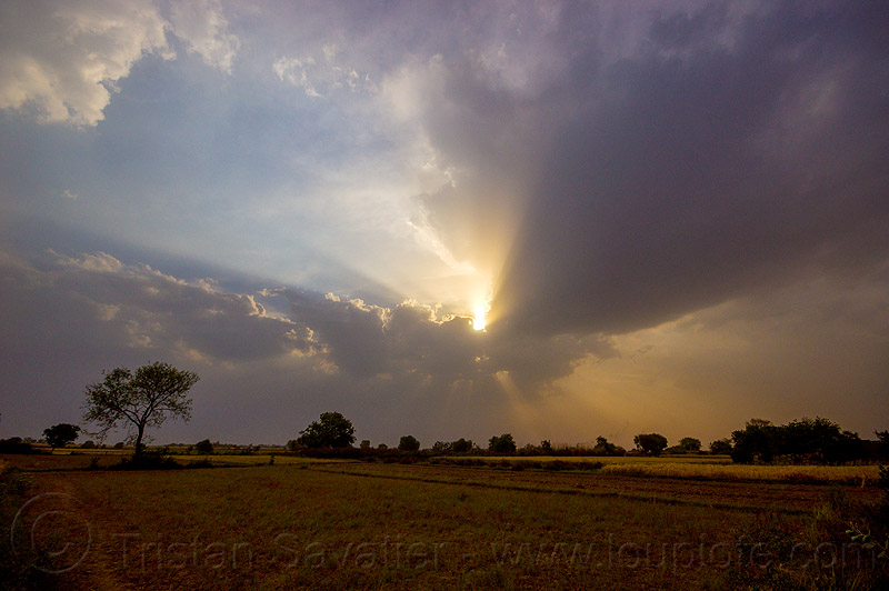 crepuscular rays - evening sky with clouds and sun rays over fields (india), cloudy