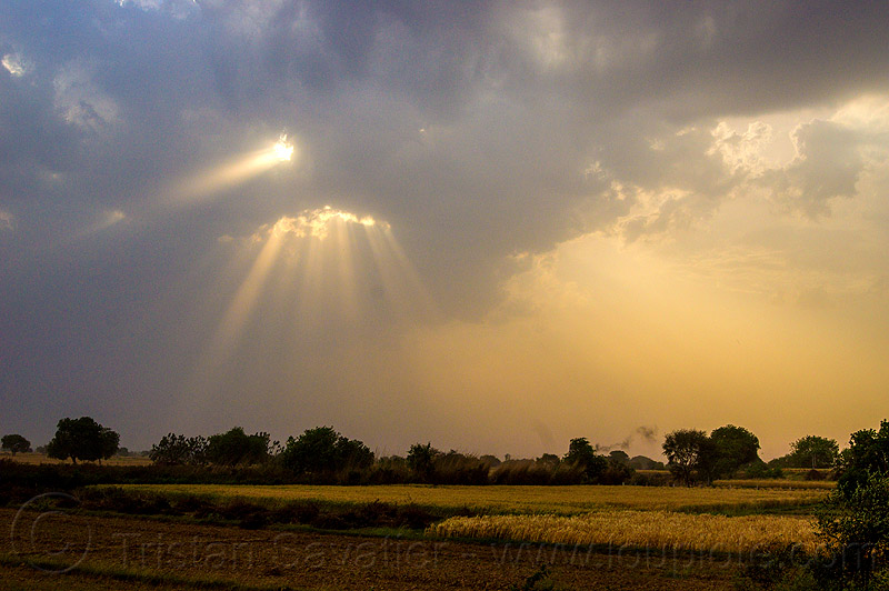 crepuscular rays - sun rays through clouds, cloudy, crepuscular rays, fields, india, sun rays through clouds