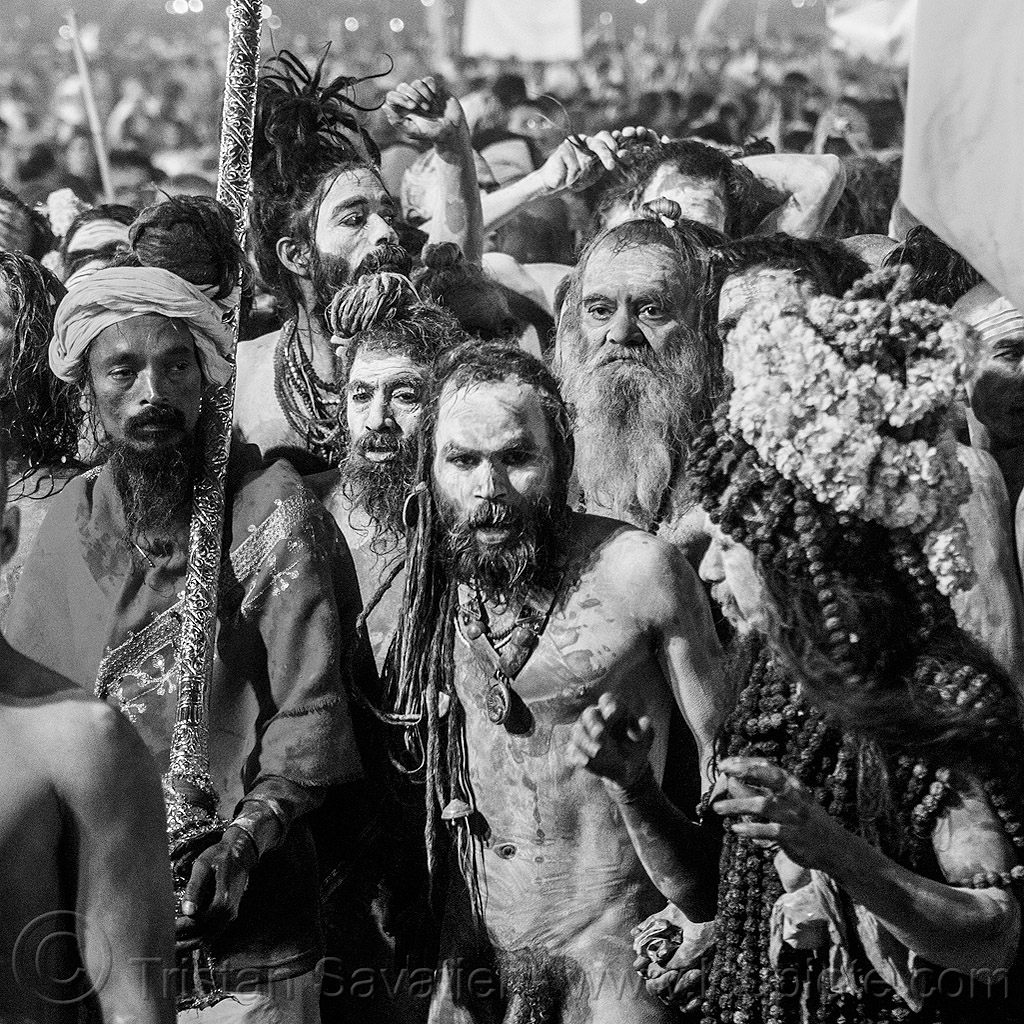 crowd of naga babas (hindu holy men) - kumbh mela 2013 festival (india), dawn, flower necklaces, flowers, hinduism, holy ash, kumbha mela, maha kumbh, maha kumbh mela, marigold flowers, naga sadhus, naked, night, orange flowers, people, procession, sacred ash, sadhu, sangam, triveni sangam, vasant panchami, vasant panchami snan, vibhuti, walking