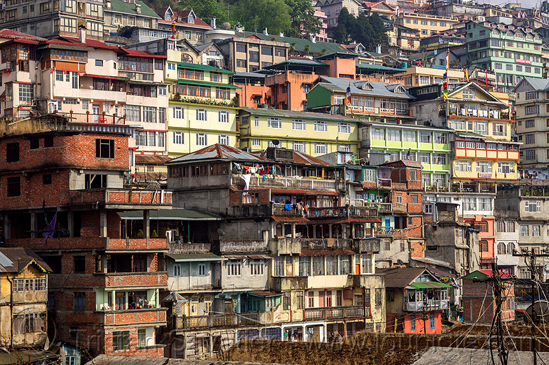 darjeeling cityscape (india), buildings, city, hill, houses