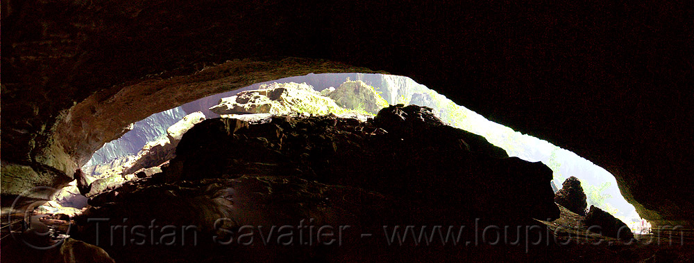deer cave mouth - mulu (borneo), backlight, cave mouth, caving, deer cave, gunung mulu national park, natural cave, spelunking, stitched, vault