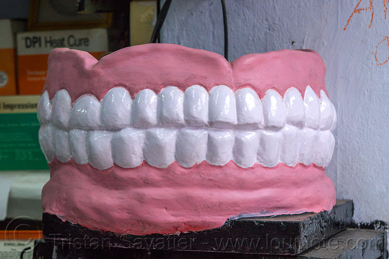 denture model in dental office (india), almora, dentist, denture, india, teeth