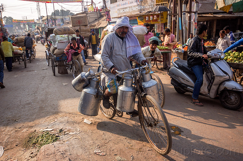 dudh-wallah on bicycle - milkman (india), bike, carrying, man, market, metal milk containers, milk man, people, riding, street, street market, transporting, transpoting, varanasi