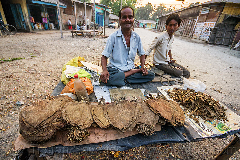 dried tobacco leaves at street market (india), boy, cross-legged, dried, gairkata, india, man, sitting, stall, street market, street seller, tobacco leaves, vendor, west bengal