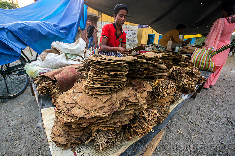 dried tobacco leaves on stall at street market (india), dried, gairkata, india, stall, street market, street seller, tobacco leaves, vendor, west bengal